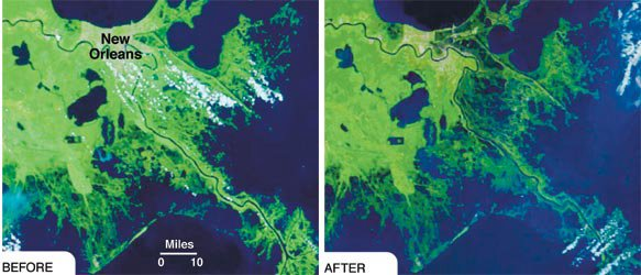 Louisiana's coast, before and after Hurricane Katrina